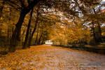 Autumn in Maksimir Park 09 II by hrvojemihajlic