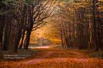 Autumn in Maksimir Park 09 III by hrvojemihajlic