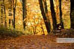 Autumn in Maksimir Park 09 IV by hrvojemihajlic
