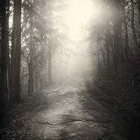 Ray of Hope by hrvojemihajlic