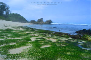 kondang merak beach 2 by SandzzSandy