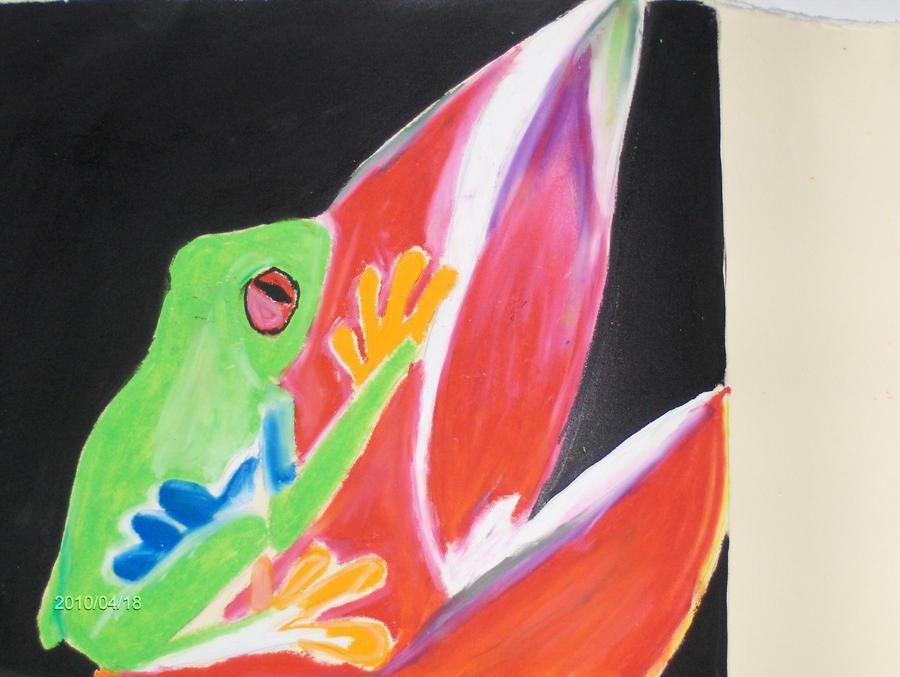 red eye frog by mandyblue