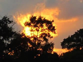 10.22.10 Houston Sunset by Lala-Yala
