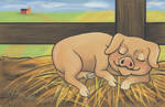 Naptime on the Farm