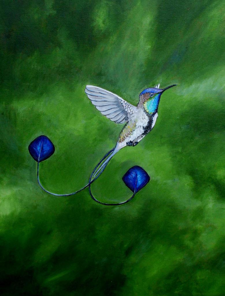 Marvelous Spatuletail Hummingbird by PaintedKelpie