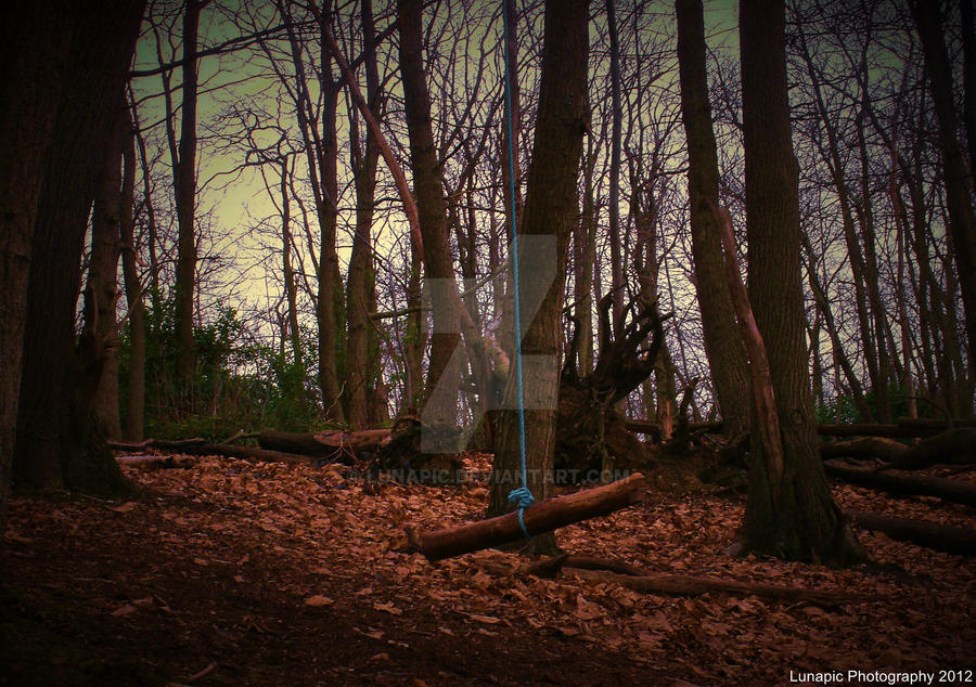Rope Swing by Lunapic