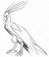 Avian Spirit by Talec