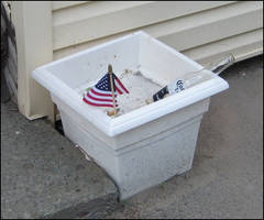 America, F--- Yeah by Talec