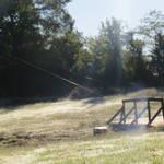 Long web in the sun