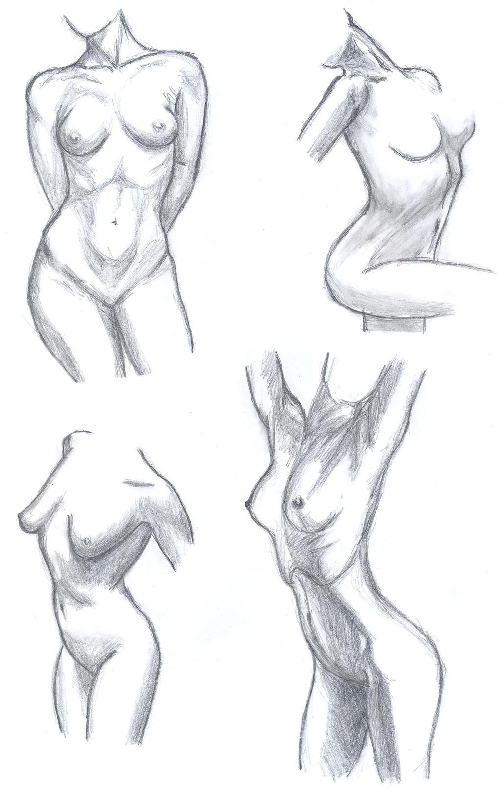 Female anatomy practice