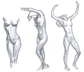 Anatomy Practice 025 - Female body