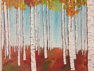 Birch woods by jdsilence