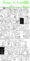 Nuzlocke in a Nutshell - The beginning