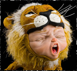 Big Roar 5