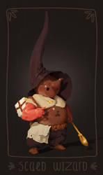 scald wizard by sirallon