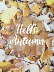 Fall encounter