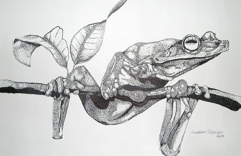 Frog Stippling by vanillafrapp