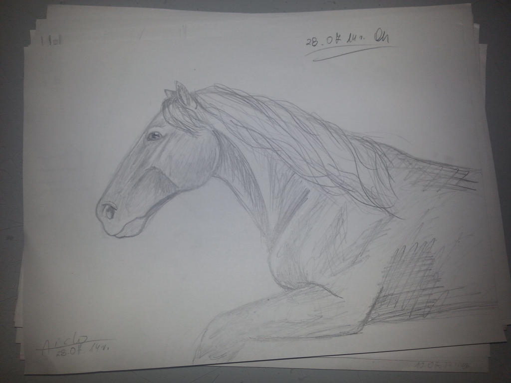 Horse by Aiclo