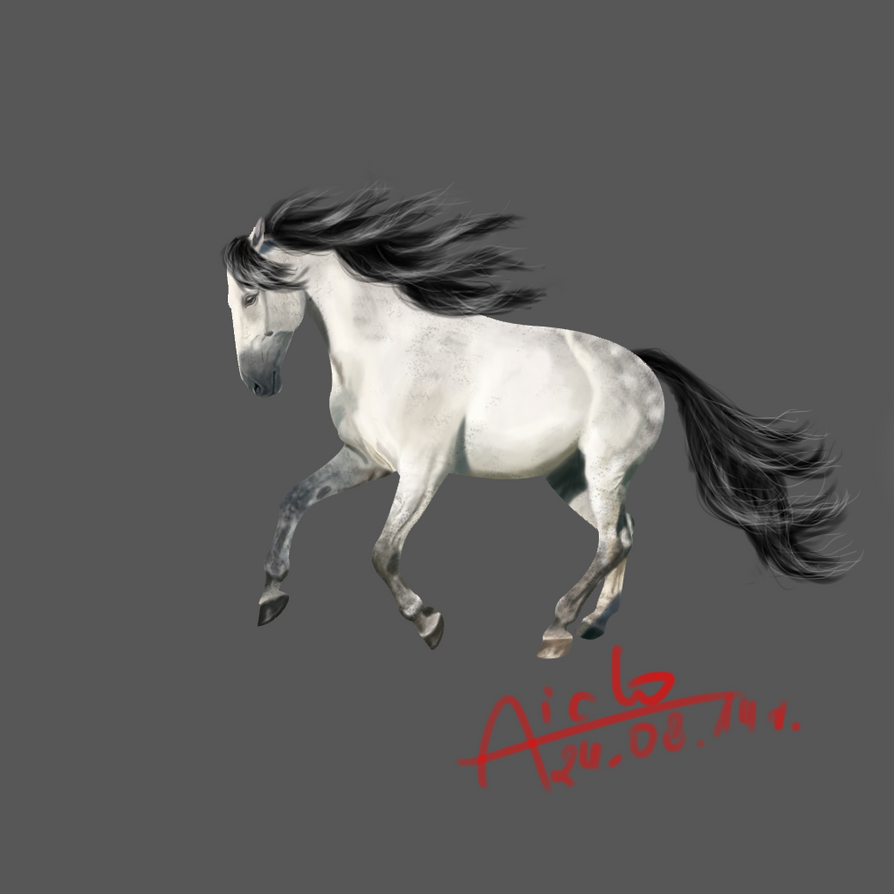 Madryt - my horse by Aiclo