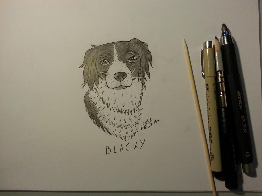 Blacky by Aiclo