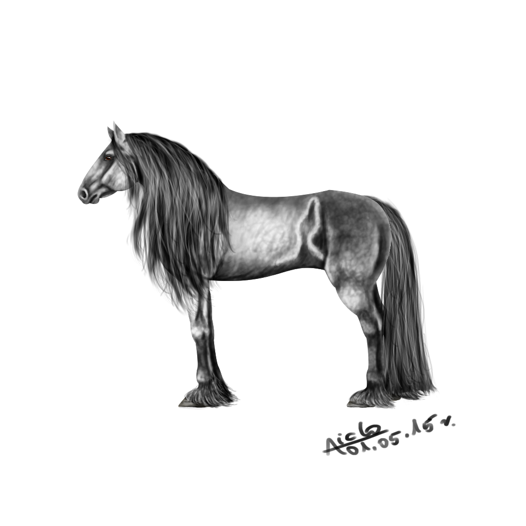 Percheron Horse by Aiclo