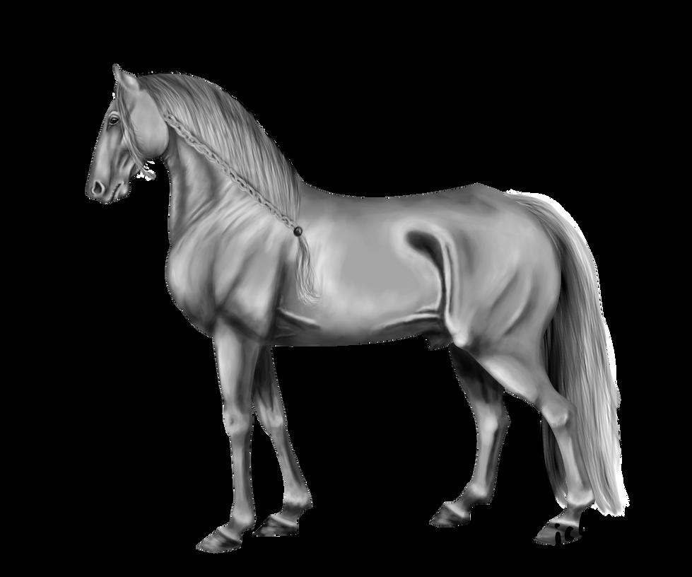 Greyscyle Horse (training) by Aiclo