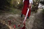 HSA_MEIKO_bloody sword