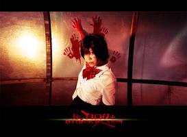 BLOOD+_Soul of Katana by hybridre