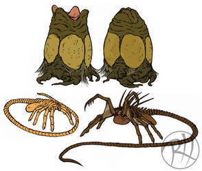Facehugger and Eggs