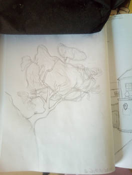 attempt to draw a tree