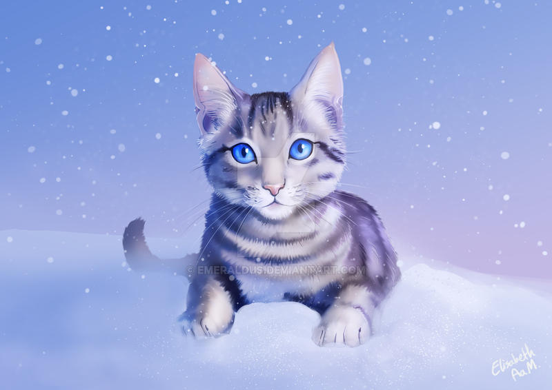 2134 best Funny How it Will Go images on Pinterest | Funny ...  |Winter Scenes With Cats