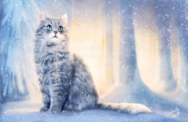 Cat in winter wonderland