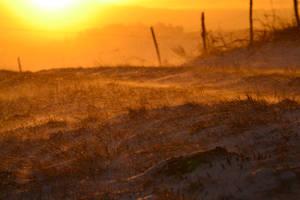Dawn by Piscisvolantis