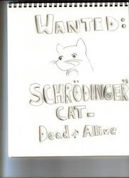 Schrodinger's Cat by timmylosthishead