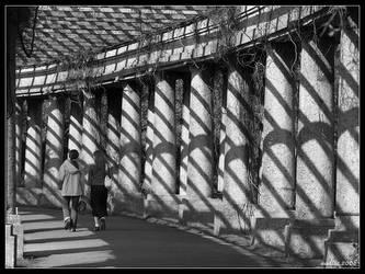 Lone walk by aadicc