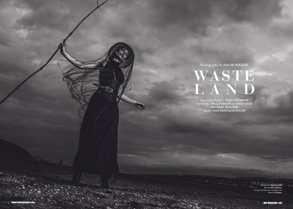 Wasteland by Dapicture