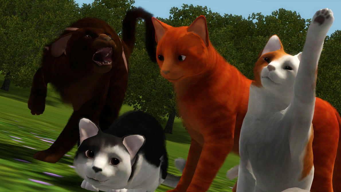 Sims Cats And Dogs Th Or Th