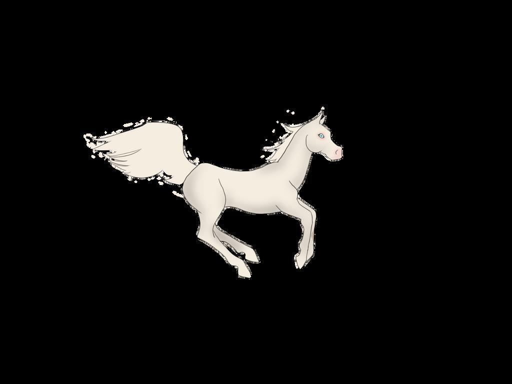 The Mutiara Breed by Horsez-Rule on DeviantArt