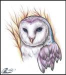 An owl tattoo