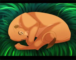 Sleepy Nala