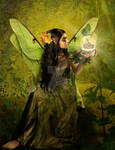 The Fairy of Clairvoyant