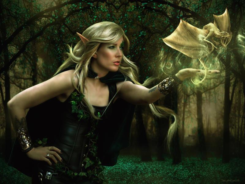 Dragon Elf