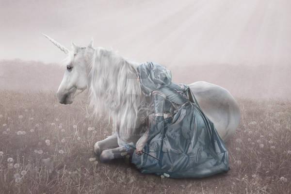 Horsewhispherer