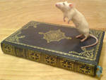 Mouse standing on book