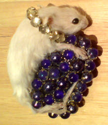 Taxidermy mouse brooch, Gems
