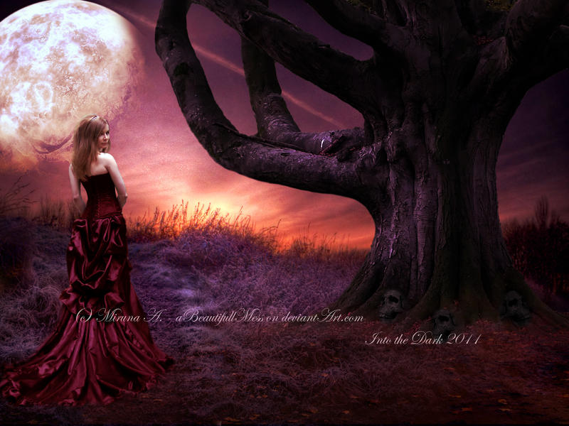 Into the Dark by aBeautifullMess