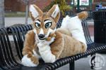 See Fursuit - Bench Pose
