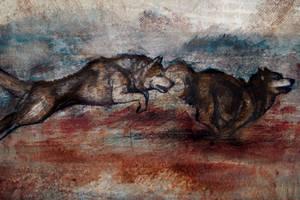huskies running by Sayrel