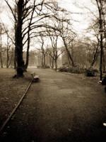 Park by Rosebatterr