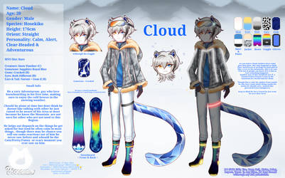 Cloud reference sheet 2021